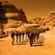 Petra Guards — Stock Photo