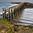 Pretty Pier — Stock Photo
