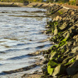 Stock Photo: Rocky bank on River Forth