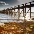 Sun rays bursting through pier — Stock Photo #15023837
