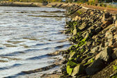Rocky bank on the River Forth — Stock Photo