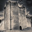Castle Close View — Stock Photo #22361149