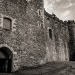 Castle entrance — Stock Photo #22361607