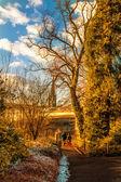 Senior Citazens walking in the sunset — Stock Photo