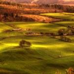 Scottish Farmland in Perth — Stock Photo