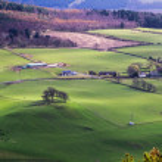 Scottish Farm — Stock Photo