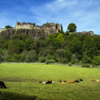 Stirling Castle — Stock Photo #31117869
