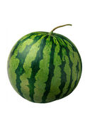 Ripe and juicy watermelon — Stock Photo