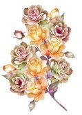 Akvarel ilustrace květ — Stock fotografie