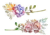 Fleur illustration aquarelle — Photo