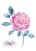 Aquarel illustratie bloem — Stockfoto