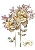Watercolor illustration flower — Stock Photo