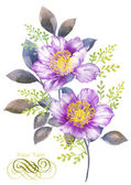 Watercolor illustration flower — Stock Photo