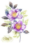 Sulu boya çizim çiçek — Stok fotoğraf