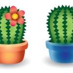 Cactus — Stock Vector #13304421
