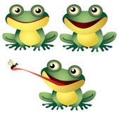 Cartoon frog — Stock Vector