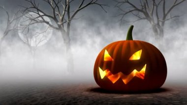 Halloween Pumpkin — Stock Video