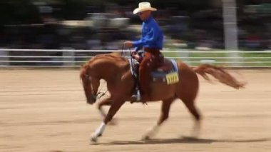 Horse rider in horse show — Stock Video
