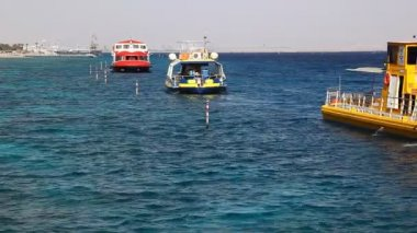 Glass boats in Eilat, for observing of fish, dolphin, shark and corals — Vidéo