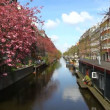 Stock Video: Amsterdam Holland floating house, canals, bridges, buildings, boats