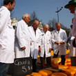 Experts examine cheese at Alkmaar Dutch Cheese Market — Stock Video