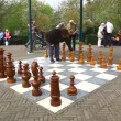 Playing Chess in the open air - Stock Photo