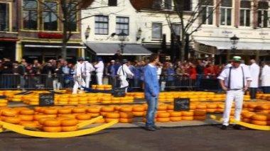 Mercado de queso holandés alkmaar — Vídeo de stock