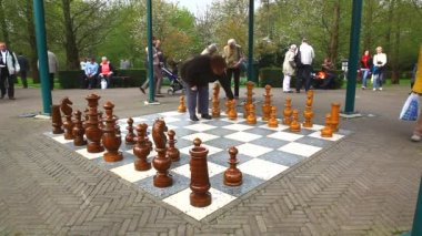 Playing Chess in the open air — Stock Video