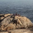 The rock of Copacabana Beach Rio de Janeiro, Brazil  — Stock Video
