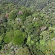 Aerial helicopter fly over tropical forest on hills - Stock Photo