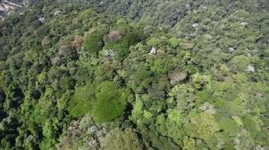 Aerial helicopter fly over tropical forest on hills — Stock Video