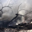 Aftermath of a big fire — Stock Video #21566885