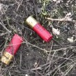 Hunting shotgun ammunition - 