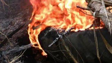 Burning smoking tire — Stock Video