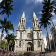 Stock Video: CATEDRAL DSe - Sao Paulo MetropolitCathedral - Brazil time lapse