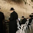 Stock Video: Slihot at Western Wall, Jerusalem