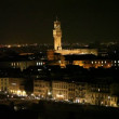 Florence at night — Stok video