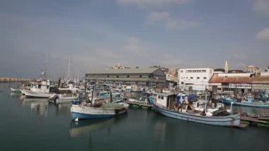 Docked boats float in the Jaffa fish harbor — Stock Video