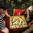 Game Go, public park in Chengdu — Stock Video #21826455