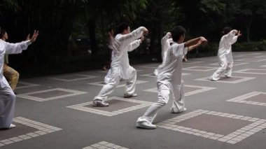 Chinese man and woman dressing white silk practice balancing Tai Chi in the People's Park daily — Stock Video