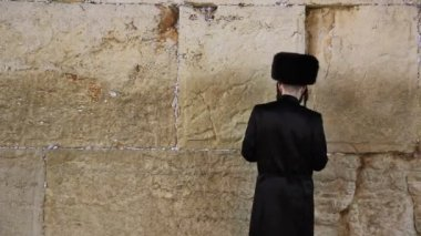 Orthodox Jew prays at the Western Wall — Stock Video