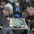 Retired persons senior citizens play Chess time lapse - Stock Photo