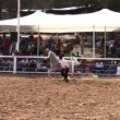 Riders show off fine Arabihorse riding during national championship — Stock Video #23079322