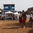 Riders show off fine Arabian horse riding during the national championship - Stock Photo