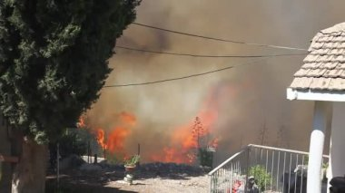 Forest fires in Kiryat Tivon, Israel — Stock Video