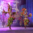 Carnival time! Carnival group with costumes during the Gran Gala — Stockvideo