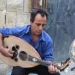 A man plays the Oud guitar — Stock Video