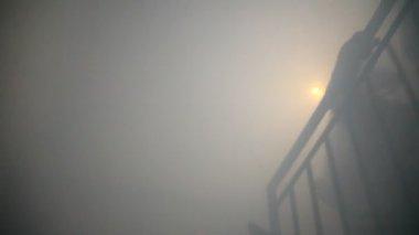Firefighters walk in smoke — Stock Video