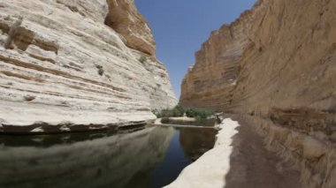 The wilderness of Ein Avdat in the Negev district in southern Israel — Stock Video