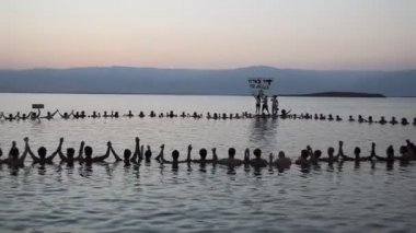 Spencer Tunick 'Save the Dead Sea' floating installation — Stock Video